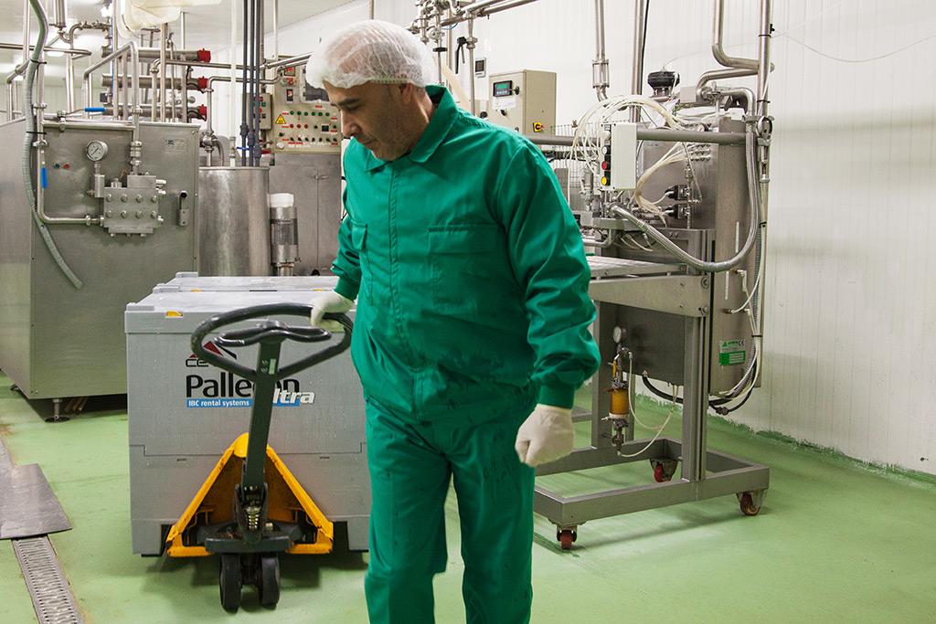 Productores de huevo pasteurizado al por mayor