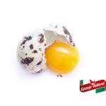 Huevos de Codorniz, Beneficios Salud