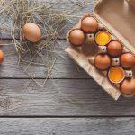 conservación de huevos frescos