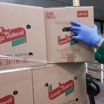 Normalidad en el suministro de huevos ante el COVID-19