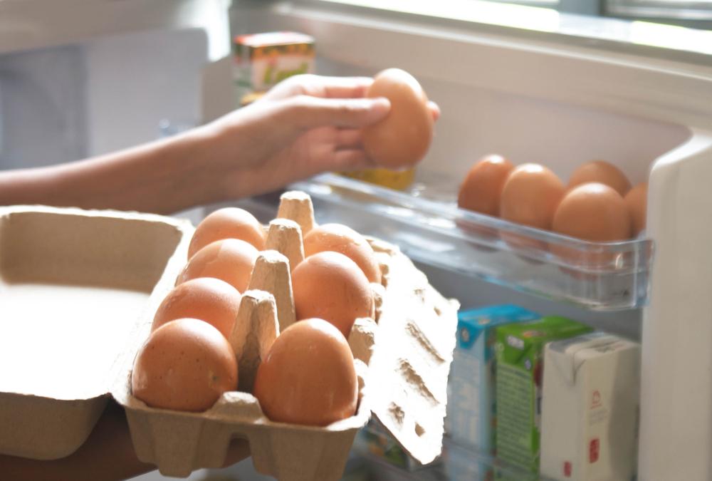 conservacion huevos frescos_granja valleval